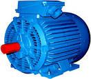 Электродвигатель АМН 200L2  (АН 200L2) 75кВт/3000об\мин, фото 2