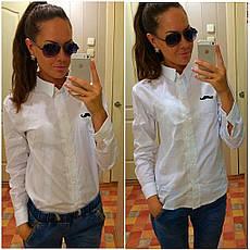 Классическая рубашка, фото 3