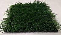 Искусственная трава для мини-футбола MSC SportGrass 36-38 мм c вшитой разметкой