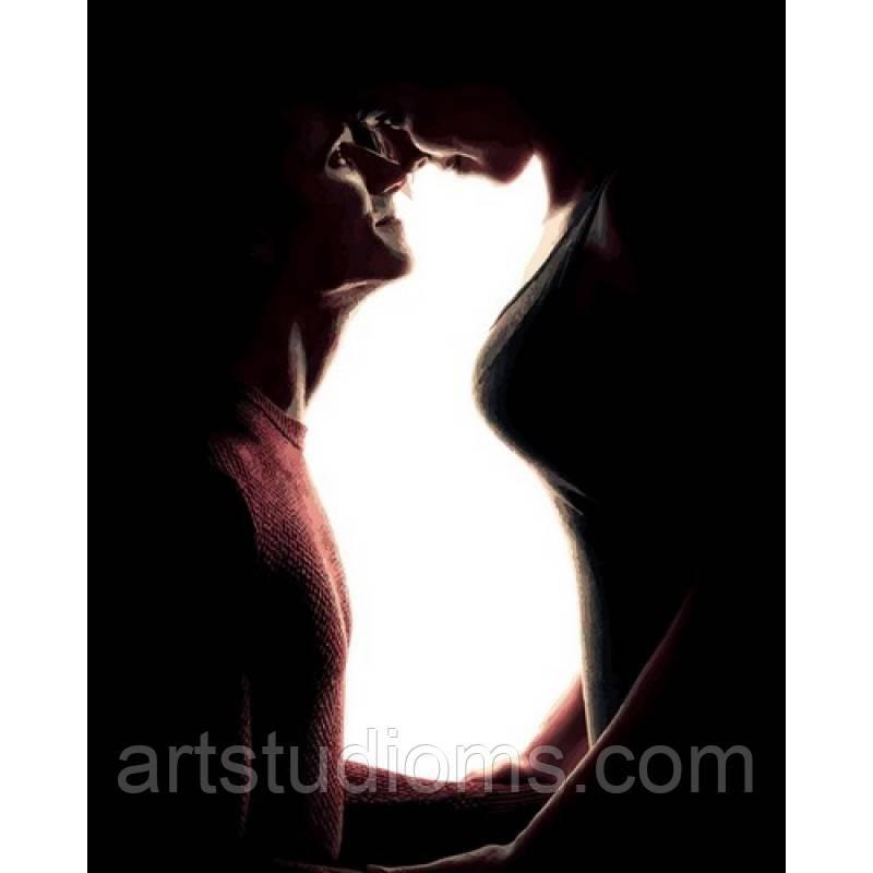 Картина по номерам Домашние любимцы Кошка 40 х 50 см (с коробкой)