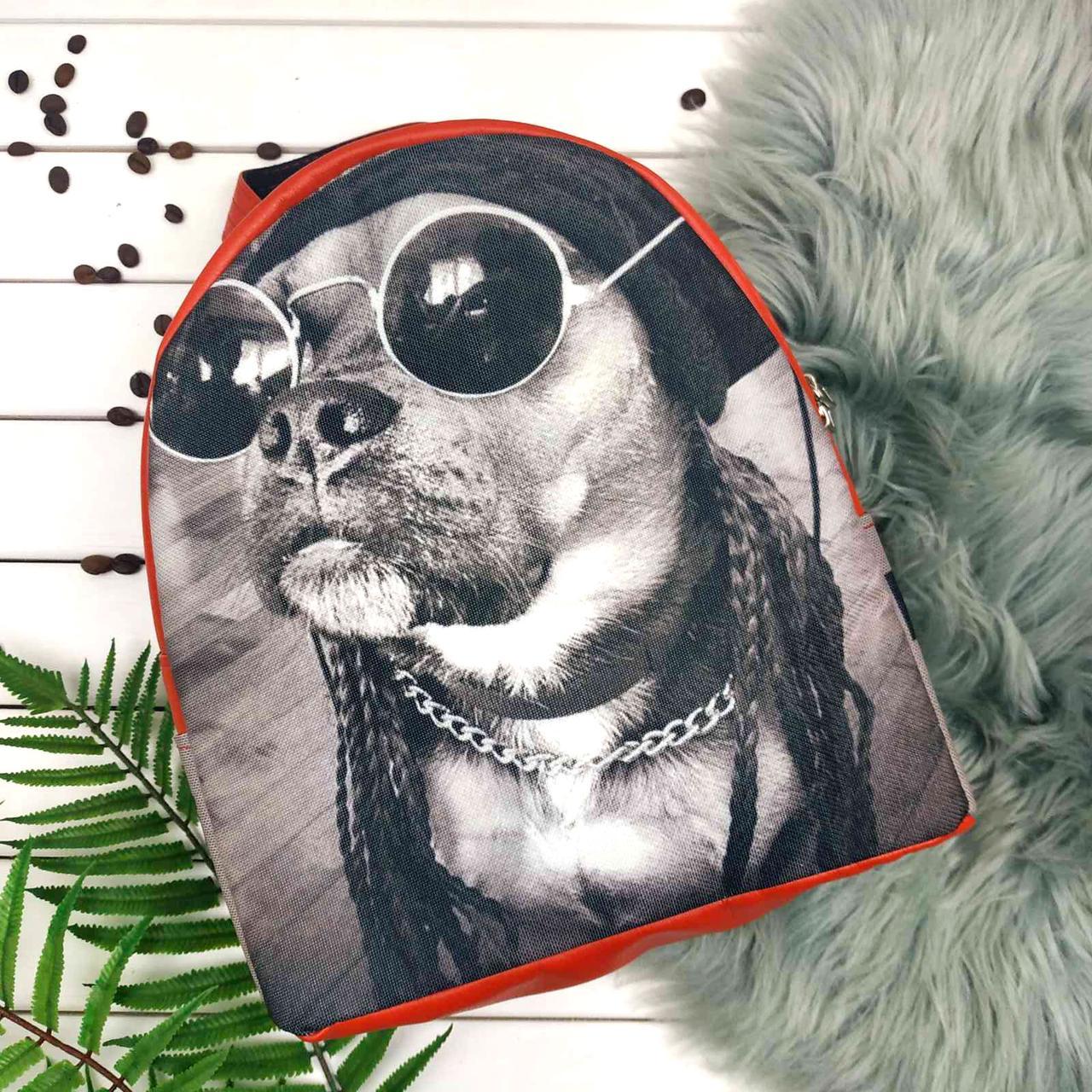 Рюкзак Moderika Arco красный с рисунком Собака в очках (78132)