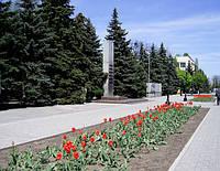 Таможенные услуги в Павлограде