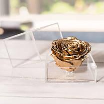 Стабилизированный бутон роза в коробке Lerosh - Premium Gold,  Золото