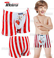 Детские боксеры на мальчика Indena. В комплекте 2 трусов