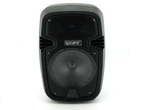 Акустическая стерео колонка портативная с комбоусилителем микрофоном и пультом ДУ Kipo KB-Q5 30 Вт (par_kbq5)
