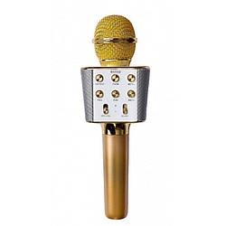 Беспроводной караоке микрофон колонка Bluetooth радиомикрофон Wster WS 1688 Gold  Золотой  (par_WS1688_2)