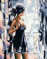 Картина по номерам Вид на Париж 40 х 50 см (с коробкой), фото 1