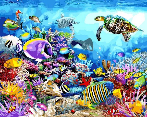 Картина по номерам Черепаховый рай 40 х 50 см (с коробкой)