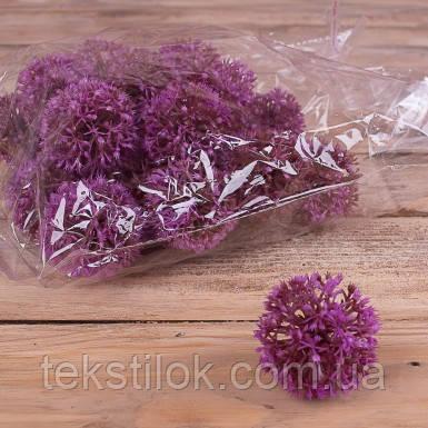 Головка чеснок purple