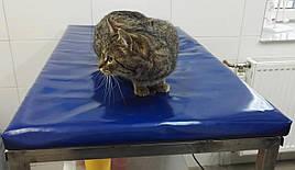 Мат для ветеринарных клиник 600х1200х50см