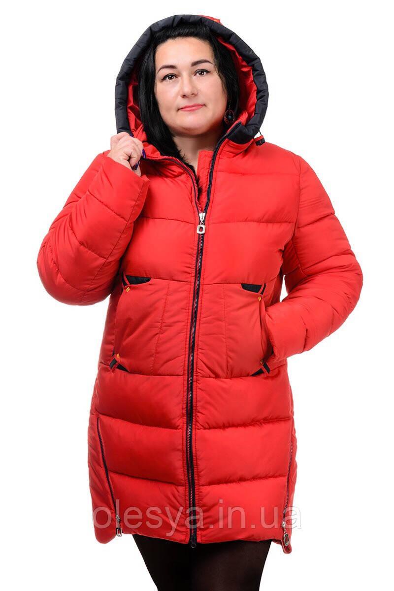 Зимняя женская куртка на биопухе Большие размеры 50 - 60