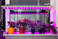 Фито LED Светильник IP67 220V LLP F3-90W 1150мм для цветов 51led (красный/синий-39/12) УКРАИНА