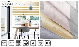 Рулонні штори День-Ніч BH 2516 (5 варіантів кольору)