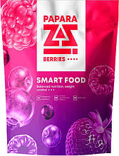 Мультипротеиновые коктейли Paparazzi (Папарацци VISION) Лесные ягоды (Berries)