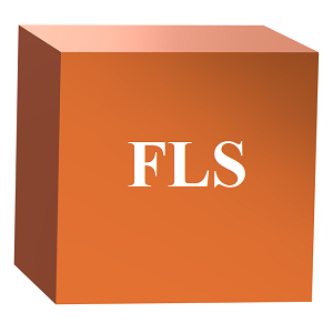 File Lookup Services (FLS)