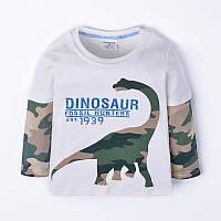 Реглан для мальчика Динозавр камуфляж