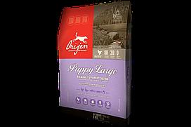 Сухой корм Orijen Puppy Large Breed для щенков крупных пород, 11.4 кг