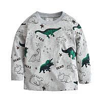 Реглан для мальчика T-rex Dino