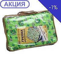 Электрогрелка Эргоком ГЭМР-1-60