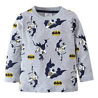 Реглан для мальчика Летающие Бэтмены