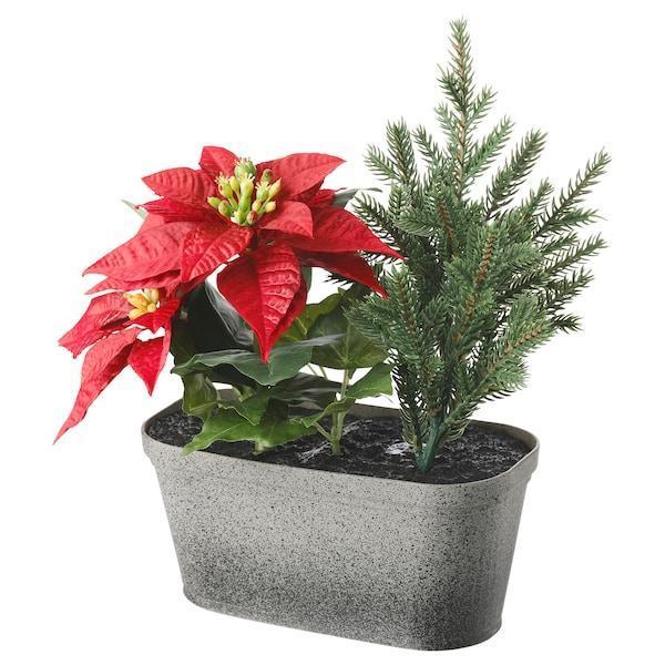 IKEA, ВИНТЕРФЕСТ, Искусственное растение в горшке, композиция, красный овал, (404.329.93)