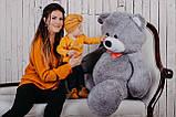 Большая мягкая игрушка мишка Билли 150 см Серый, фото 4