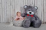 Большая мягкая игрушка мишка Билли 150 см Серый, фото 5