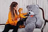 Большая мягкая игрушка мишка Билли 150 см Серый, фото 7