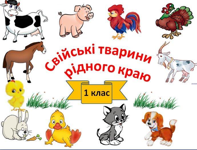 Плакат «Свійські тварини»