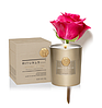 """Rituals. Ароматическая Свеча """"Imperial Rose"""".  Производство Нидерланды, 360 гр (60 часов горит), фото 2"""