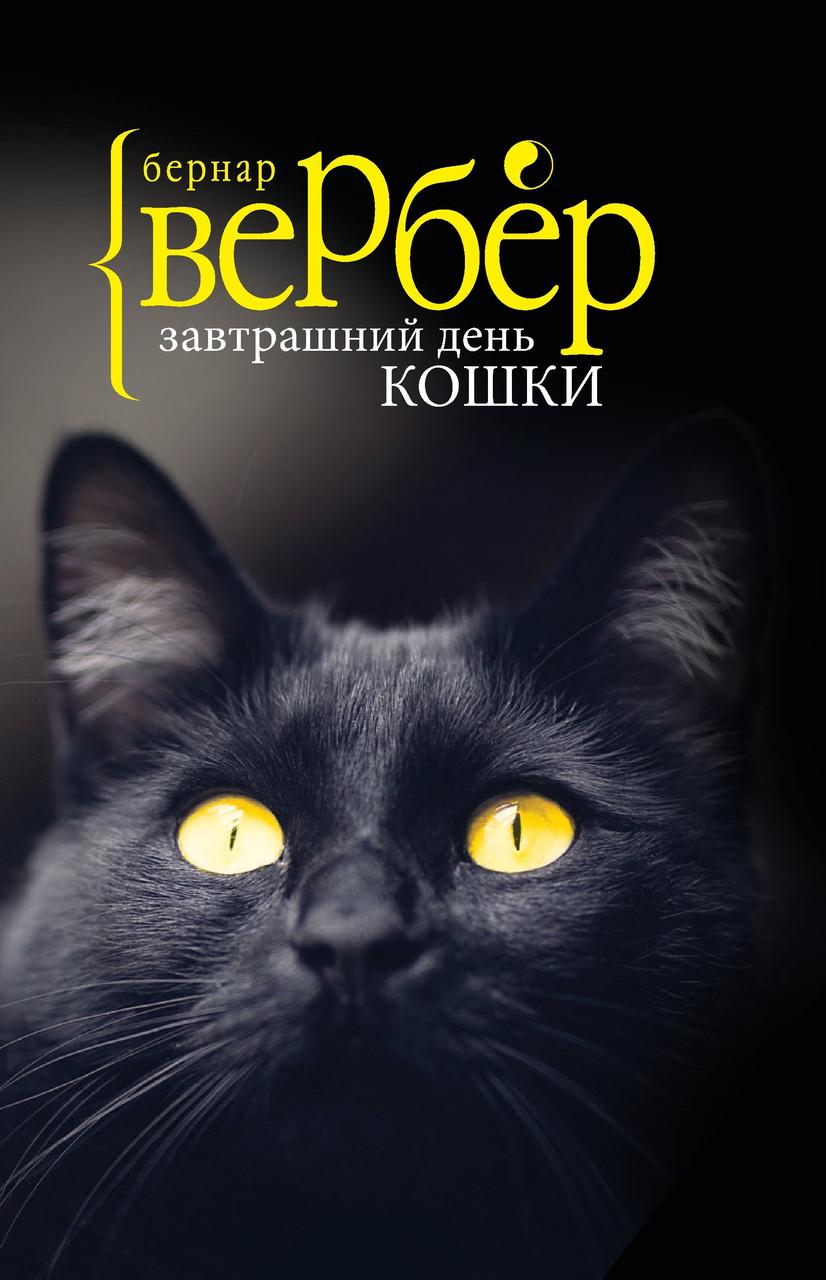 Завтрашний день кошки (покет)