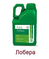 Лобера, к.е., гербіцид Альфа Смарт Агро, тара 5 л