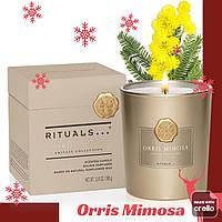 Ароматическая Свеча. Ritual of Orris Mimosa. Производство Нидерланды, 360 гр( 60 часов горит)