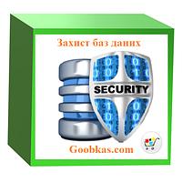 Разработка защиты базы данных
