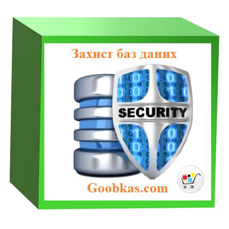 Обеспечение защиты баз данных