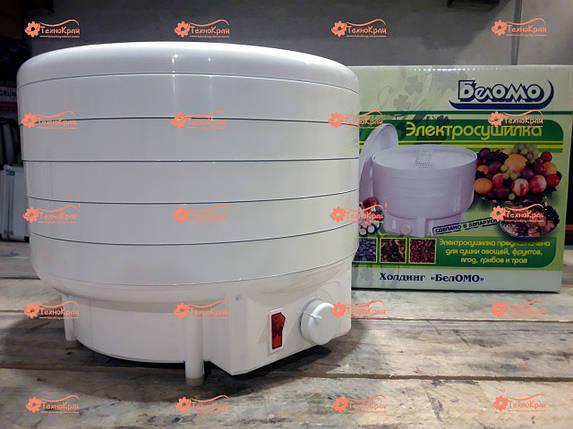 Сушилка для овощей и фруктов БелОМО 8360.01, фото 2