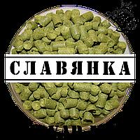 Славянка (Украина)
