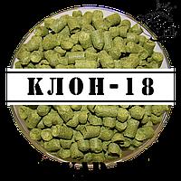 Клон-18 (Украина)