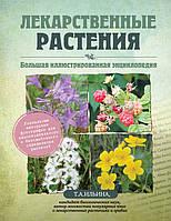 Лікарські рослини. Велика ілюстрована енциклопедія. Тетяна Ільїна