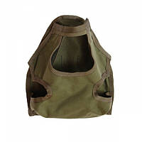 Подсумок Flyye RAV Gas Mask Bag Ranger Green, фото 1