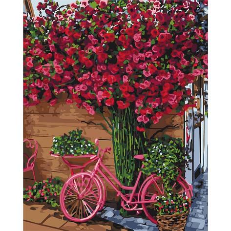 Картина по номерам Отдых в Бельгии КНО2260 40x50см Идейка, фото 2