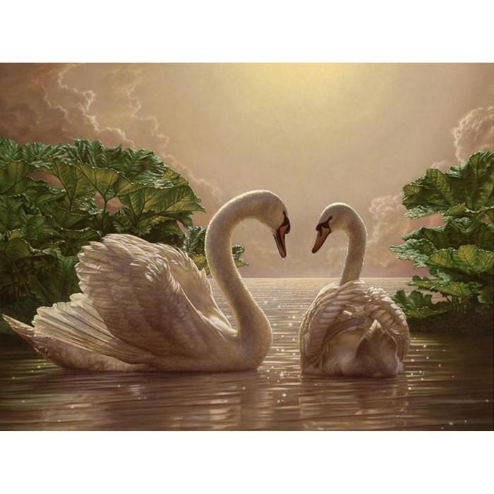 Картина по номерам Пара лебедей КНО301 40x50см Идейка