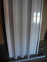 Дверь гармошка глухая, белый ясень 610,глянцевая, 81см