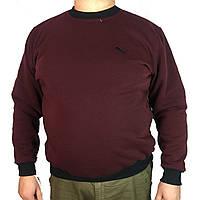 Мужской батник реплика PUMA ,бордо,теплый с начесом большой размер,Турция