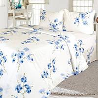 Двуспальный комплект постельного белья белое в голубые цветы Ярослав