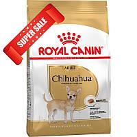 Сухой корм для собак Royal Canin Chihuahua Adult 0,5 кг