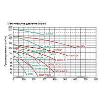 Одноступенчатый компрессор Hayward Grino Rotamik SKH 301 Т1 (312 м3/час, 380В), фото 2