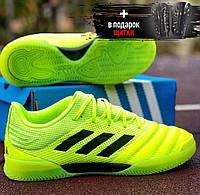 Футзалки adidas copa indoor green 19.3