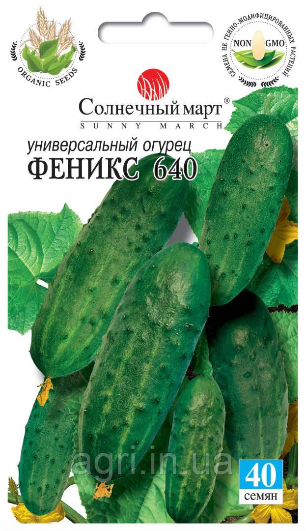 Огурец Феникс 640, 40шт