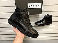 Мужские зимние кожаные ботинки Gattini Black черные натуральный мех/шерсть